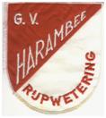 Vlag gymvereniging Harambee